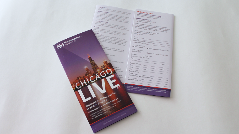 ChicagoLive2015a