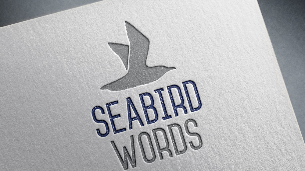 seabird-clever-crow